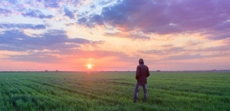 Face aux suicides dans le monde agricole